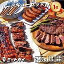 バーベキューセットA 合計約2.5kg!究極のバーベキュー肉(洋風焼肉セット・BBQセット)
