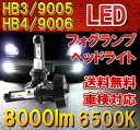 Philips LED フォグランプ ヘッドライト HB3/9005 HB4/9006 2個 新基準車検対応 6500k 8000LM 12V/24V車兼用 ファンレス ハロゲンフィラメント並みの細い発光 一年保証 配光調整可 車検対応 カットラインOK ledバルブ LEDハイビームバルブ 白 hb3 フォグ hb4 楽天カード分割