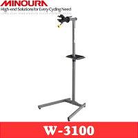 W-3100