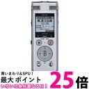 ポイント最大25.5倍 オリンパス Voice Trek DM-750 シルバー(1台) 【SS4545350052188】