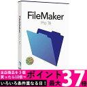 ファイルメーカー FileMaker Pro 16 HL2B2J/A(対応OS:WIN&MAC) 【SS5390045047470】