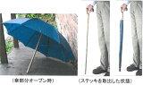 杖と傘のデュエットウォーカー