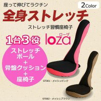 ストレッチ習慣 LOZA メッシュタイプ 健康器具/座るだけで全身ストレッチ!