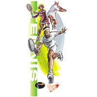 DSIS ソルボテニス ブルーグレーの画像