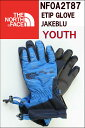 THE NORTH FACE YOUTH REVELSTORKE ETIP GLOVE NF0A2T8C MXY BLUE ザ ノースフェイス イーチップグロー...