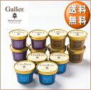 お中元ギフトアイスクリームガレープレミアム アイスクリーム ギフトセット12個(4個×3種類) お礼お返し内祝い出産祝いお祝