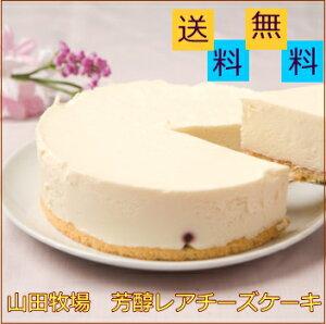 お歳暮 ギフト アイスクリーム 山田牧場 芳醇 レアチーズケーキ 5号 (冷凍) お礼 お返し 内祝い 出産祝い お祝 p10