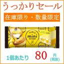 【うっかりセール】赤城乳業 PABLO mini アイスバー 26本 【赤城乳業】【訳あり 在庫処分品】