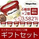 【SS期間中10%オフ&クーポンで50円オフ】ハーゲンダッツ アイスクリーム ギフト セット12個