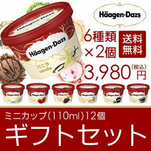 「500円オフクーポン配布中!」 父の日 ギフト アイスクリーム ハーゲンダッツ アイスクリーム ギフト セット12個 アイス お礼 お返し 内祝い 出産祝い お祝
