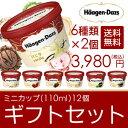 お中元 ハーゲンダッツ アイスクリーム ギフト セット12個 アイス お礼 お返し 内祝い 出産祝い