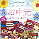 ハーゲンダッツ アイスクリーム お中元スペシャルセット