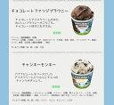 ベン&ジェリーズ12個セット 12種類から選び放題♪ アイスクリーム ギフト アイス 【送料無料】Ben&Jerrys お中元 お礼 お返し 内祝い 出産祝い お祝
