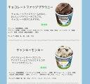 ギフト アイスクリーム ベン&ジェリーズ12個セッ...