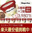 お歳暮 ハーゲンダッツ アイスクリーム ギフト セット12個 アイス お礼 お返し 内祝い 出産祝い