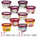 ハーゲンダッツ アイスクリーム ミニカップ 17種類から2種類選べる福袋12個(6個×2種類)セット