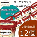 [20%OFF] ハーゲンダッツ アイスクリーム ミニカップ 13種類から2種類選べる12個(6個×2種類)セット