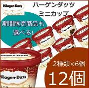 エントリーでポイント5倍! [20%OFF] ハーゲンダッツ アイスクリーム ミニカップ 16種類から2種類選べる12個(6個×2種類)セット