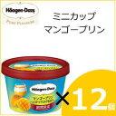 ハーゲンダッツ ミニカップ マンゴープリン〜ココナッツミルク仕立て〜 12個