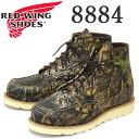 Redwing-8884