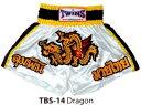 【TWINS】ツインズムエタイパンツ(キックパンツ)ドラゴンTBS-14