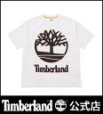 ティンバーランド timberland メンズ <SPORTS LIFESTYLE>半袖 90's インスパイアド ティー Timberland