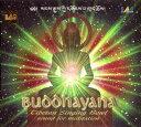 Buddhayana レビュー クーポン ネパール シンギングボウル Singingbowl ヒーリング