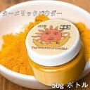ターメリック ウコン スパイス カレー インド パウダー Turmeric Powder 【50gボトル】 TIRAKITA / あす楽