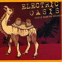 ELECTRIC OASIS / アラビアン・エレクトロ ベリーダン