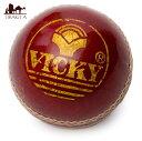 クリケットボール Vicky / クリケット・ボール スポー...