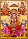 ещепе╖ехе▀б╝бже╡еще╣е╨е╞егбжеме═б╝е╖еу едеєе╔д╬е╥еєе╔ееб╝┐└══е▌е╣е┐б╝б╠╠є39.2cmб▀╠є27.5cmб═ещепе╖ехе▀б╝ е╡еще╣еЇебе╞ег е╡еще╣еЇебе╞егб╝ ╡╚╛═┼╖ Lakshmi Laxmi е╟егб╝еяб╝еъб╝ е╟егеяеъ едеєе╞еъев евб╝е╚ │и▓ш │л▒┐ ╢т▒┐ ║т▒┐ б┌еье╙ехб╝д╟100▒▀епб╝е▌еє┐╩─шбїдвд╣