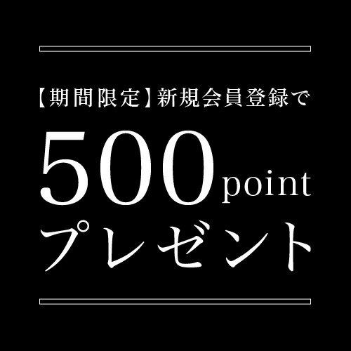 会員登録500ptプレゼント