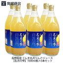 長野県産 ぐんま名月りんごジュース【名月の雫】1000ml瓶×6本セットぐんま名月 りんご果汁100