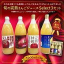 信州 長野県産 りんごジュース【旬の果汁 贅沢生絞り りんご...