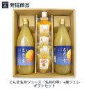 【ギフト】長野県産 ぐんま名月りんごジュース【名月の雫】1000ml瓶×2本&果ジュレセットぐんま名