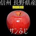 信州 長野県産 サンふじ 約5kg2017年度収穫 りんご ...