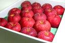ジョナゴールドりんご 化粧箱 約5kg 中玉18〜20個入り 青森、岩手産 ご贈答おすすめ果物です|お歳暮 プレゼント ギフト ジョナゴールド Jonagold 林檎 アップル
