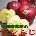"""長野産 「安曇野(あづみの)」高原のサンふじリンゴ5kg 大玉14〜16個入り○店長おすすめ果物です最上の""""天皇杯""""を受賞した、甘い豊かな果汁を誇る、ブランドで選ばれる林檎です"""