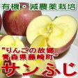 まるくみりんご園の「サンふじりんご」青森産 藤崎町 5kg(中玉18〜20個入り)太陽の恵みをいっぱい受けて真っ赤に日焼けしたプレミアムなリンゴです![有機肥料100%・減農薬栽培採用]ふじりんご/ふじ りんご/林檎 02P07Feb16