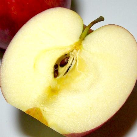 りんご ジョナゴールド 約10kg 大玉 28〜32個入り 青森産 (CA貯蔵リンゴ) 10キロ りんご リンゴ 林檎 アップル