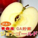 ジョナゴールド 送料無料!青森産 ジョナゴールドリンゴ「CA貯蔵りんご」5kg サイズはお任せです(16〜23個入り)甘みと酸味がバランスいいリンゴ ちょっとキズがあるなど「訳あり」です。02P29Jul16