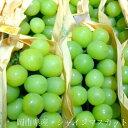 岡山産 シャインマスカットぶどう 2kg(4〜6房前後)人気の種無し葡萄 食べやすくとっても美味!ヒスイ色の外観も美しい新ブドウです【高級 グレープ】シャインマスカット ギフト gift 店長おすすめ果物