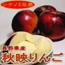 秋映りんご(あきばえ)約5kg 中玉 18〜20個入り 長野産店長おすすめ果物です甘い果汁で親しみやすい風味♪通好みの深紅のリンゴです!02P01Oct16