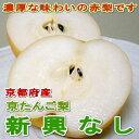 京都産 「京たんご梨」 新興梨(しんこうなし)10kg 超大玉14個入り緻密な果肉、甘くジューシー果汁タップリのお勧めのナシです02P03Dec16