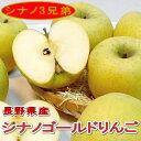 「送料無料」訳あり(わけあり) シナノゴールド リンゴ 長野産5kg 中玉 16〜20個入りパリッとした食感、甘みが強くコクが有るリンゴです。外観にキズ変形があります 林檎 りんご アップル 信州みやげ 訳あり 本場 信濃 りんご