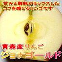 青森産 ジョナゴールドリンゴ(サンジョナゴールド)5kg 中玉18〜20個入り甘みと酸味がバランスいいコクあるリンゴです