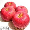 【送料無料!】青森産 ふじ りンゴ 5kg 20〜25個入り夏でもフレッシュな甘い 有袋ふじリンゴ CA長期貯蔵 フジリンゴ ふじりんご 林檎 自宅用です 贈り物には向きません【ラッキーシール対応】