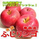 【送料無料!】青森産 ふじ りンゴ 5kg 20〜25個入り夏でもフレッシュな甘い 有袋