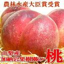 【お試し 送料無料】山梨産 加納岩果樹園の桃(かのいわかじゅえんのもも)「訳あり」約2.5kg 9~11個入り 数量限定有機肥料を活用した自然に優しい栽培は美味しくて体にも優しい♪ピュアな甘い果汁の高級桃 ラッピング対応いたします。ピーチ モモ