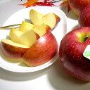 【送料無料】長野産 訳あり 信濃高原の シナノスイートりんご 約5kg 小玉 20〜23個入り ※やや外観が落ちます|りんご 林檎 リンゴ アップル アウトレット ワケアリ 信濃スイート シナノスィート